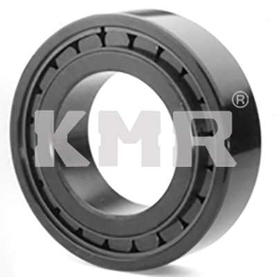 Single row full complement cylindrical roller bearings